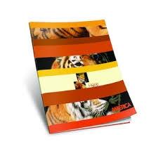 Cuaderno America T/flexible X48h.