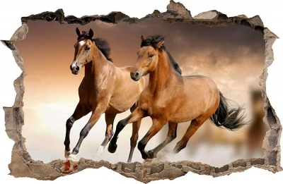 Vinilo impreso efecto 3D caballo mediano -  80x80cm - MODELO: 3D_0045